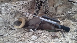 Arizona Desert Bighorn Sheep Hunting 2012 Pat Feldt & Bill Blose