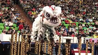 第13屆雲頂世界獅王爭霸戰 麻坡關聖宮第12度摘冠