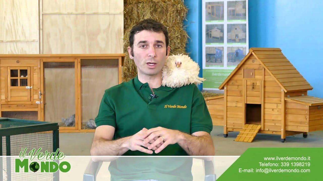 Pollai in legno per realizzare un allevamento di galline a casa youtube - Sistema di aerazione per casa ...