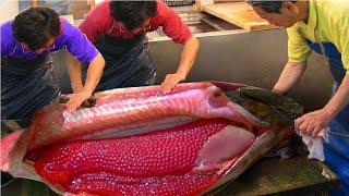 मछली के पेट को काटा तो अंदर मिली होश उड़ा देने वाली चीज़ | Weirdest Thing Found Inside Animals Part-3
