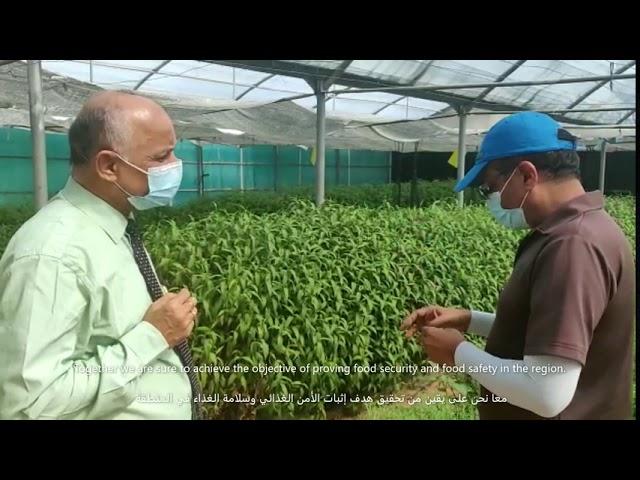Dr. R.N. Saha, Dean of BITS Pilani Dubai visits VeggiTech Farm