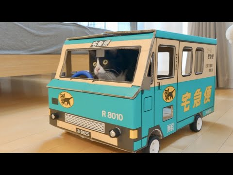 Heather Burnside - Paw Purr Azzi: Make A Bus Your Cat Can Drive