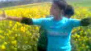 prova and ruhul sexy video dhaka collage