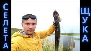 Селетинские красоты. Рыбалка на реке селета