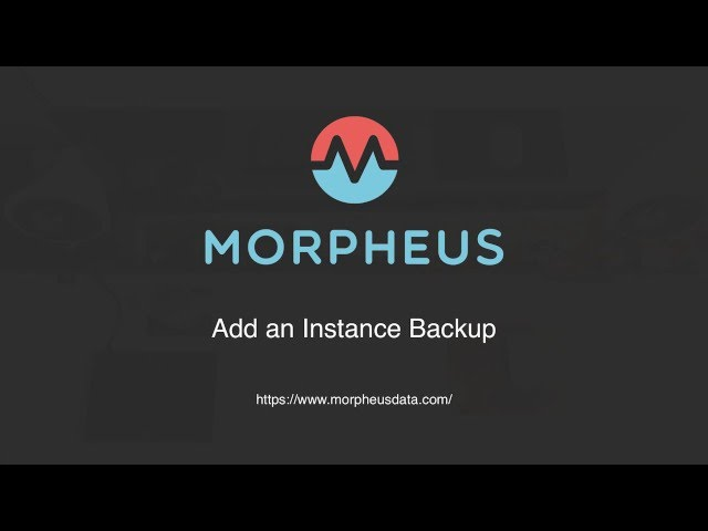 Backing Up an Existing Instance in Morpheus| Morpheus Minute