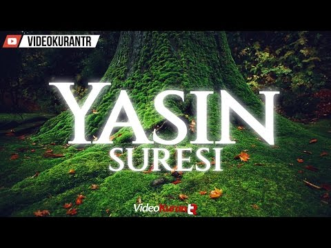 Anas Al Emadi | Yasin Suresi (37) | Türkçe Kur'an Mealleri.