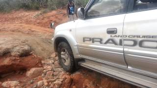 River Crossing Challenge. Tsavo East (Kenya) NAVARA and PRADO TX