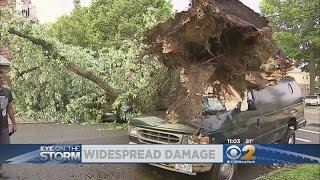Wild Weather Hammers The New York Area