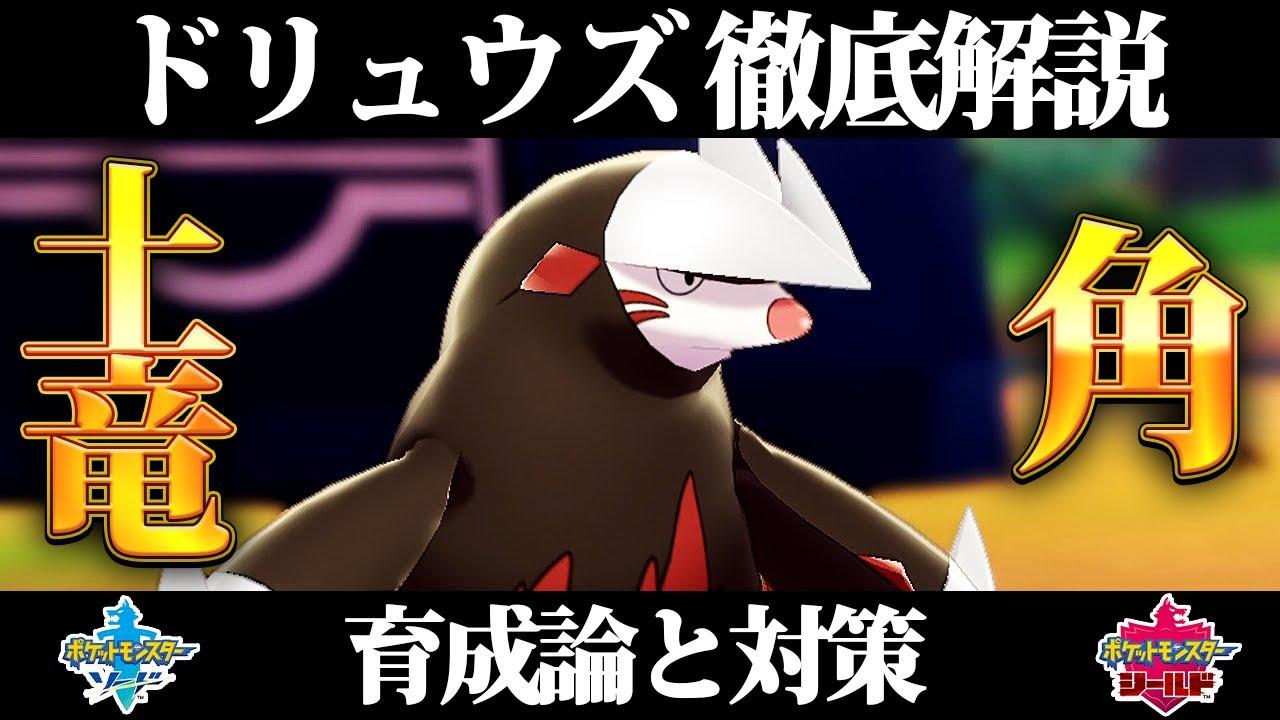 ポケモン ソード シールド 育成 論