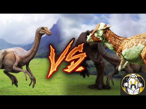 Gallimimus vs Pachycephalosaurus - Who Wins?   Jurassic World