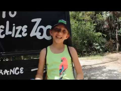 A Day at the Belize Zoo