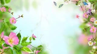 Yiruma (이루마) - Beloved [HD]