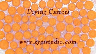 Time-lapse Of Drying Carrots, Top View.