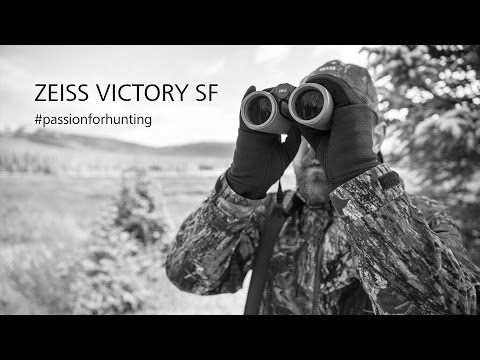 ZEISS VICTORY SF hunting binoculars in the field