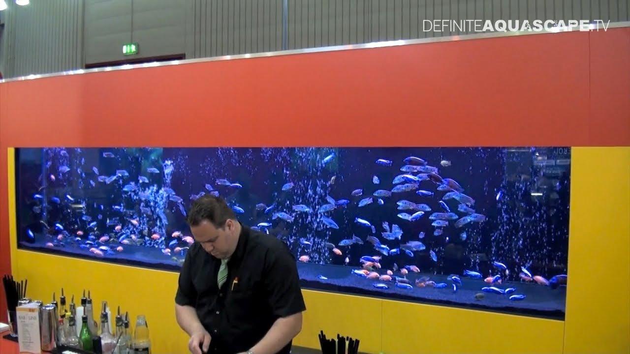 Aquarium ideas from interzoo 2012 sera pt 2 youtube for Sera aquarium