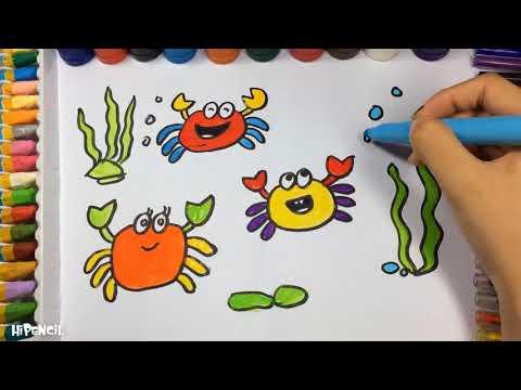 cómo dibujar animales, cómo dibujar cangrejos, , how draw, pintar, color, como aprende a dibujar