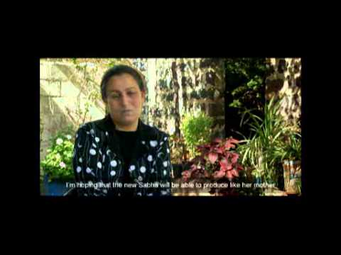 Firdos Loans KONOUZ FILM