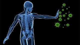 Sistema inmunológico. Tratamiento con biomagnetismo #28