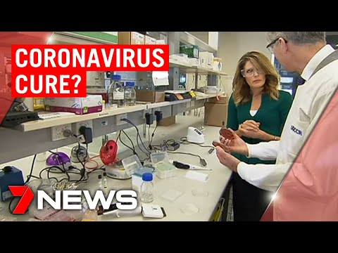 Is Australia On The Verge Of A Coronavirus Cure?   7NEWS