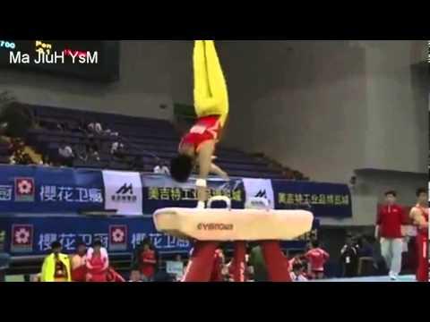 Zhang Hongtao 16.3 pommel horse score 2011