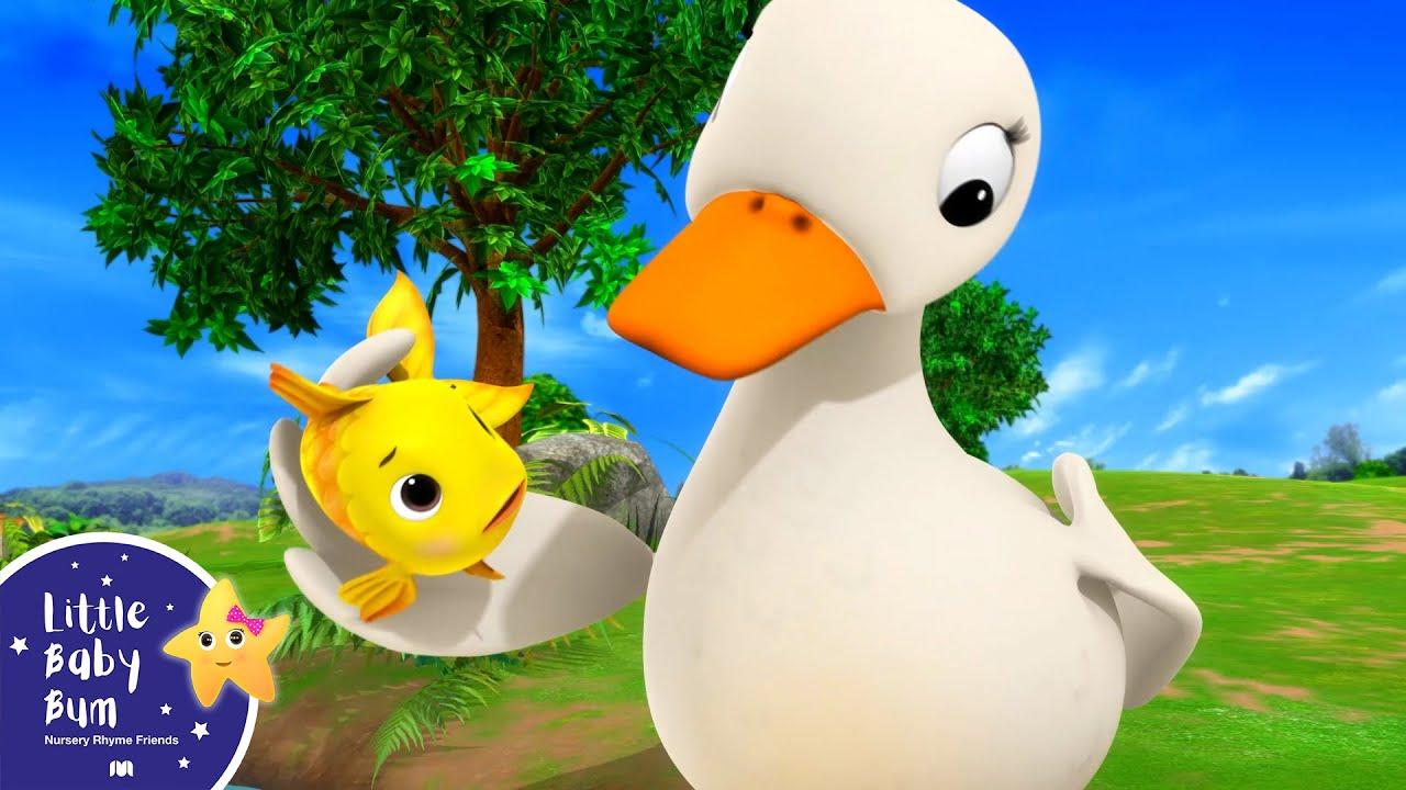 10 Little Ducks | Best Baby Songs | Kids Cartoon | Nursery Rhymes | Little Baby Bum
