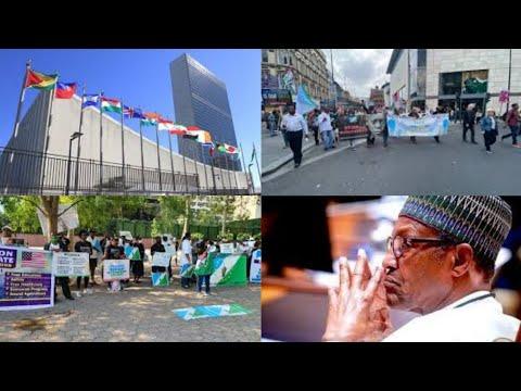 NIGERIANS ÆƓ_!t@_t∅_R̃s R@!_Ṣ€ Ã1@_R̃m OVER STATE OF NIGERIA AT UNGA
