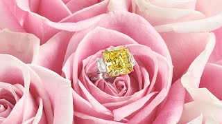 Step Into Spring With a Sparkling Selection of Diamonds