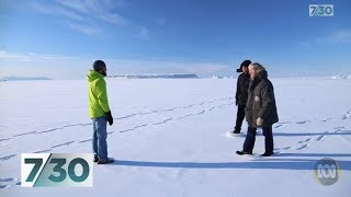 Baixar Dramatic decline in sea ice levels in Antarctica | 7.30
