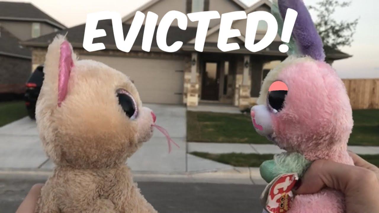55d0f92967a Beanie Boo s  Evicted! - YouTube