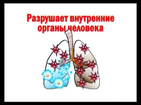 скачать туберкулеза профилактика картинки