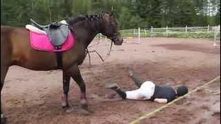Tippumisia 2 » Horse falls 2