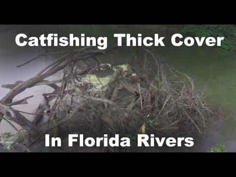 Catfishing Florida Rivers - Florida Flathead Fishing - Chasing Catfish In Florida - Florida Catfish