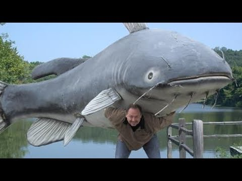 Debunking Catfishing Myths!!! Plus Awesome Tip And Techniques For Catching Catfish