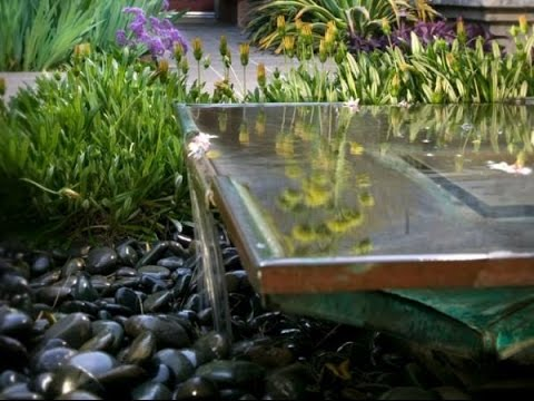 Water features in the garden modern ponds garden for Garden pond design