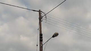 Thick, black ribbed overhead power lines.  Including ABC termination.