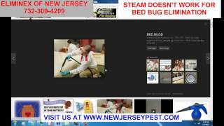 7 Ways Steam Treat for Bed Bug Control NJ Doesn