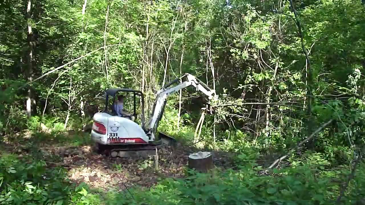 Bobcat 331 clearing small trees