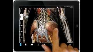 Human Anatomy Atlas - iPad tutorial