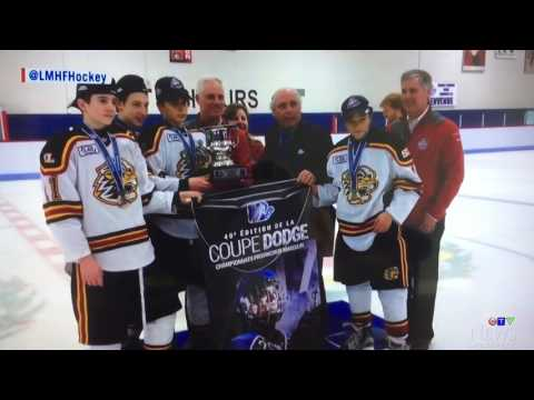 Lions South Peewee AAA Major Dodge Cup Champs on Pulse