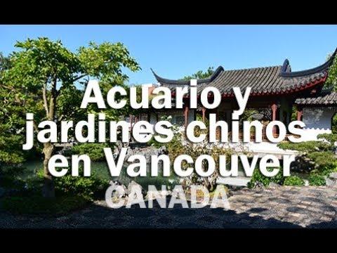 Acuario y jardines chinos en Vancouver CANADA YouTube