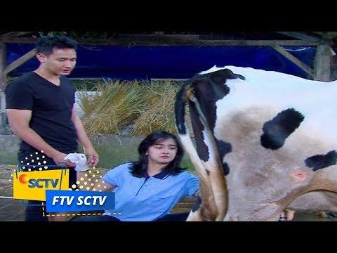 FTV SCTV - Karamel Susu Pemanis Cinta
