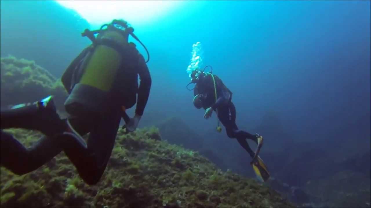 CAMPOMORO PLONGEE PLAISIR (Plongée sous marine) à Belvédère Campomoro