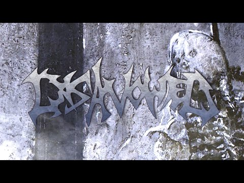 DISAVOWED - THE PROCESS OF COMPREHENSION [OFFICIAL LYRIC VIDEO] (2020) SW EXCLUSIVE