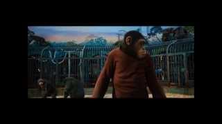 Repeat youtube video RISE OF THE PLANET OF THE APES (2011): Ceaser Confronts Rocket