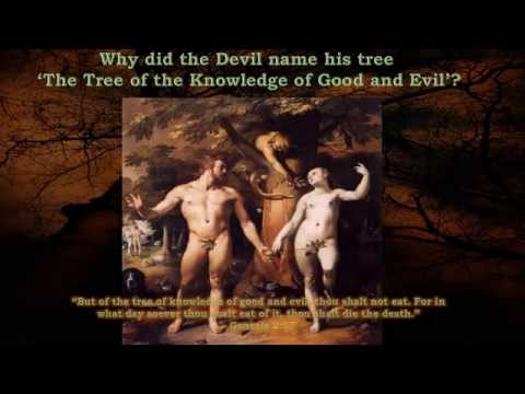 The Tree of the Knowledge of Good and Evil Explained