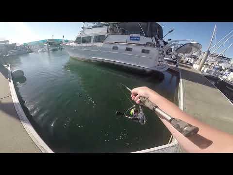 Marina Fishing - Kicked Out Twice...