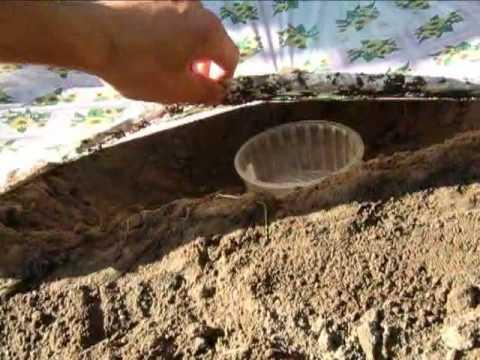 видео: Как добыть воду из грунта - конденсирование (Выживание)