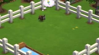 Baby Black Welsh Mountain Sheep - FarmVille 2