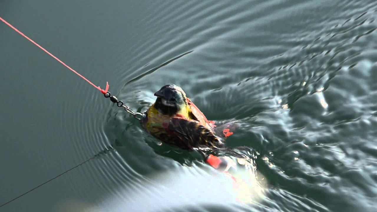 Nuotata Sparrow Lure Propeller Legs