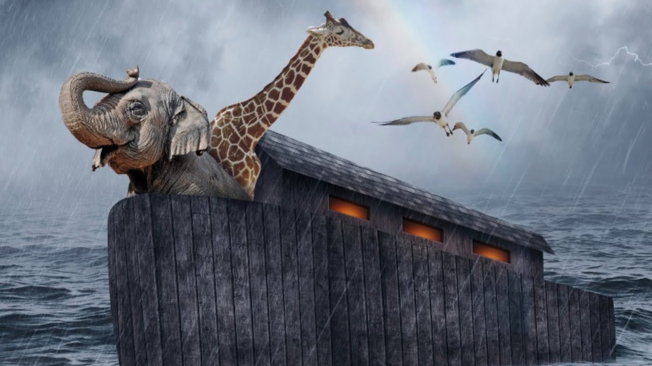 Download Here's What Nobody Told You About Noah's Ark